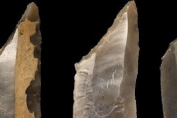 palaeolithic