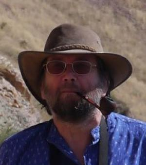 professor mark pollard
